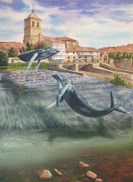 Remontando la corriente, ilustrado por Tomás Hoya Cicero. Ilustración. Illustration.