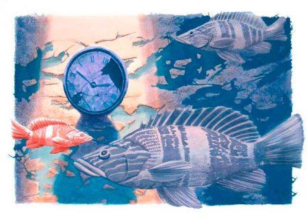 El tiempo se detuvo - Time stood still. Tomás Hoya Cicero. Ilustración. Illustration. Distorsión natura.
