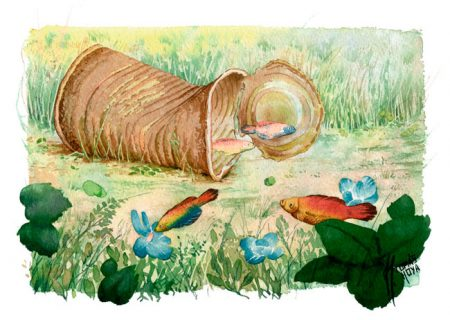 Buscando casa, acuarela. Por Tomás Hoya Cicero. Peces, lata vieja, flores. Los personajes de la pieza aparcen desorientados y fuera de lugar
