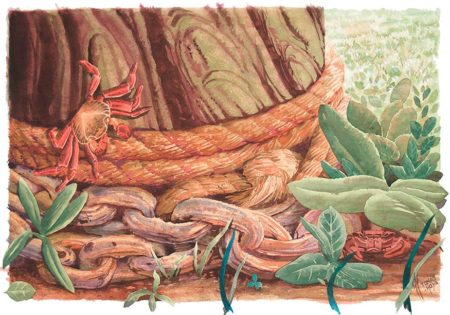 Cadenas y disimulo. Ilustración en acuarela