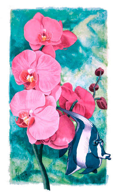 Orquídea indiferente, Tomás Hoya Cicero