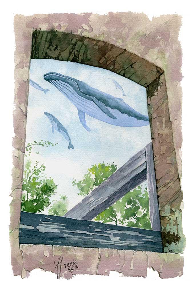 Acuarela de Tomás Hoya Cicero, pertenciente a la serie Distorsión natura. Pintura, surrealismo mágico, ballenas.