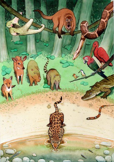 Jaguar bebiendo, ilustración en acuarela